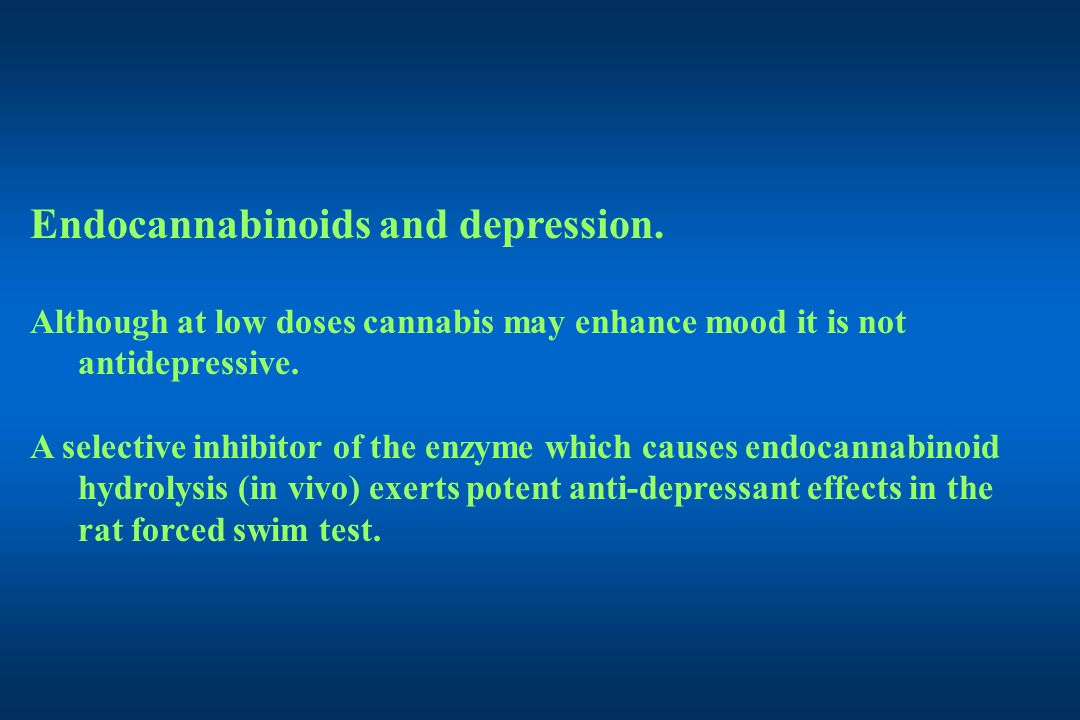 Endocannabinoids and depression.