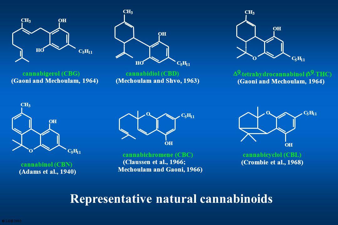   -tetrahydrocannabinol (   -THC) (Gaoni and Mechoulam, 1964) CH 3 O OH C 5 H 11 cannabidiol (CBD) (Mechoulam and Shvo, 1963) HO C 5 H 11 OH CH 3 3 cannabigerol (CBG) (Gaoni and Mechoulam, 1964) HO OH C 5 H 11 cannabichromene (CBC) (Claussen et al., 1966; Mechoulam and Gaoni, 1966) O C 5 H 11 OH Representative natural cannabinoids CH 3 cannabinol (CBN) (Adams et al., 1940) O OH C 5 H 11 OC 5 H OH cannabicyclol (CBL) (Crombie et al., 1968)  LOH 2003