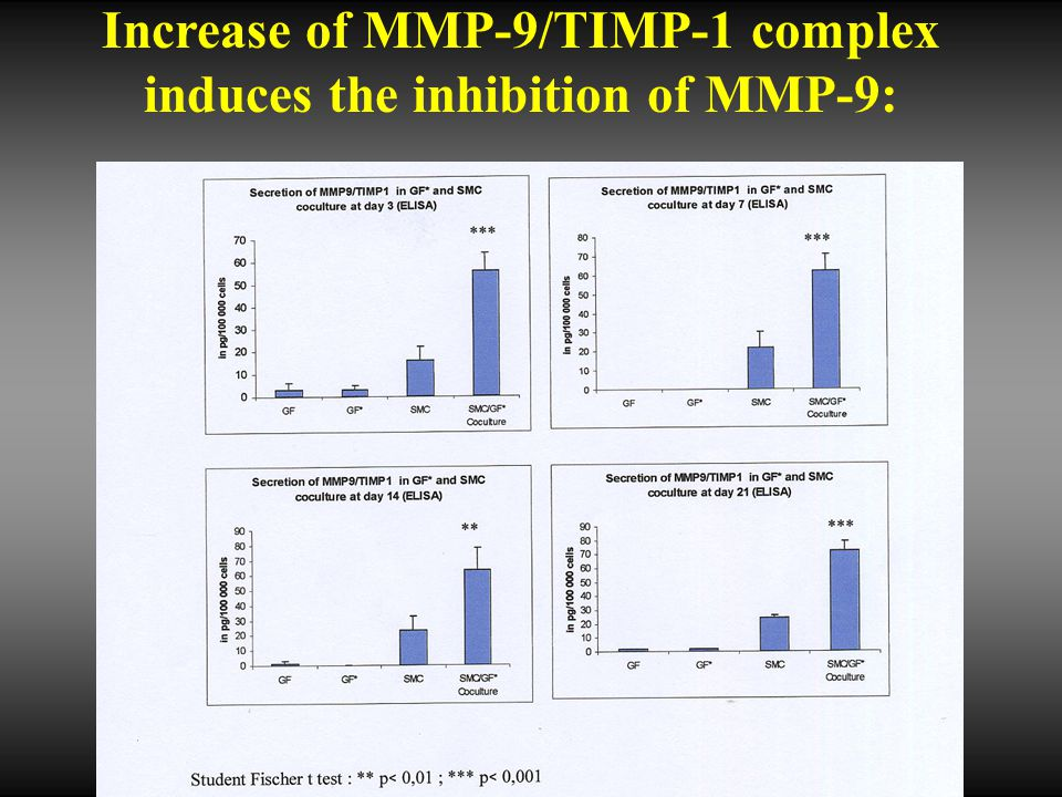 Increase of MMP-9/TIMP-1 complex induces the inhibition of MMP-9: