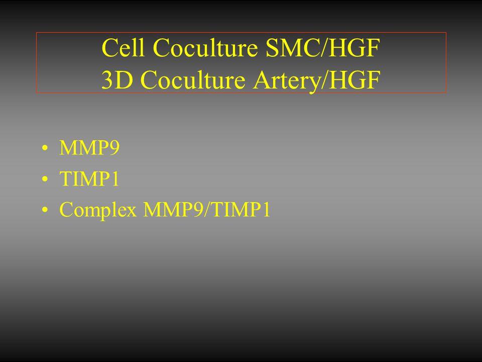 Cell Coculture SMC/HGF 3D Coculture Artery/HGF MMP9 TIMP1 Complex MMP9/TIMP1