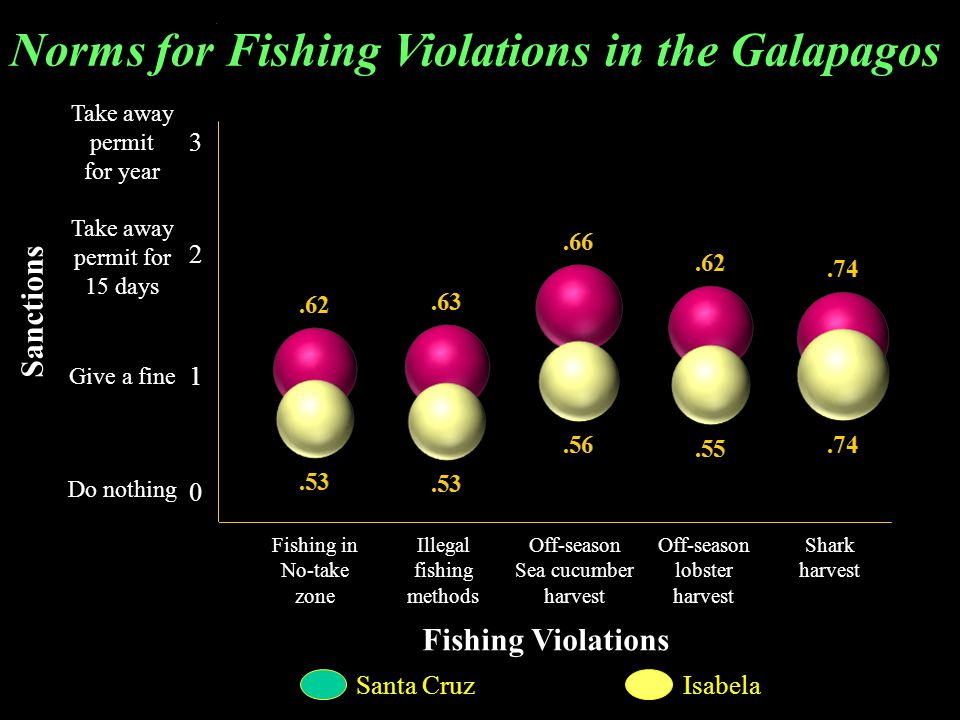 Take away permit for year Take away permit for 15 days Give a fine Do nothing Sanctions Fishing in No-take zone Illegal fishing methods Off-season Sea