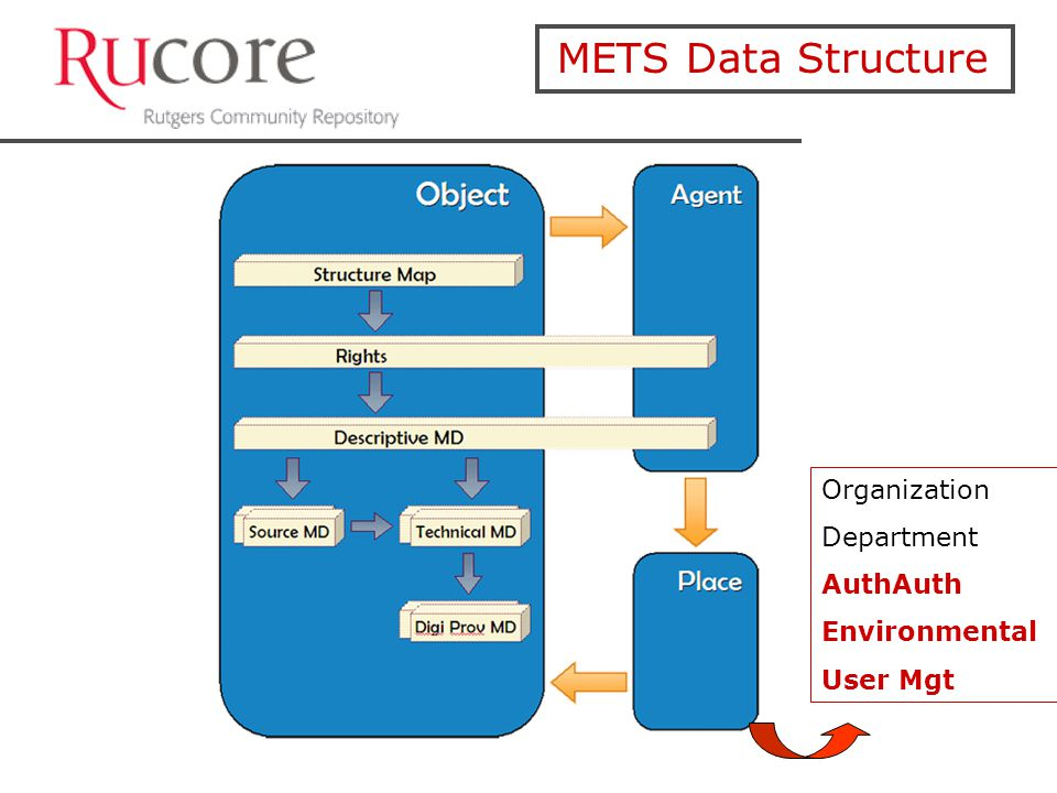 METS Data Structure Organization Department AuthAuth Environmental User Mgt