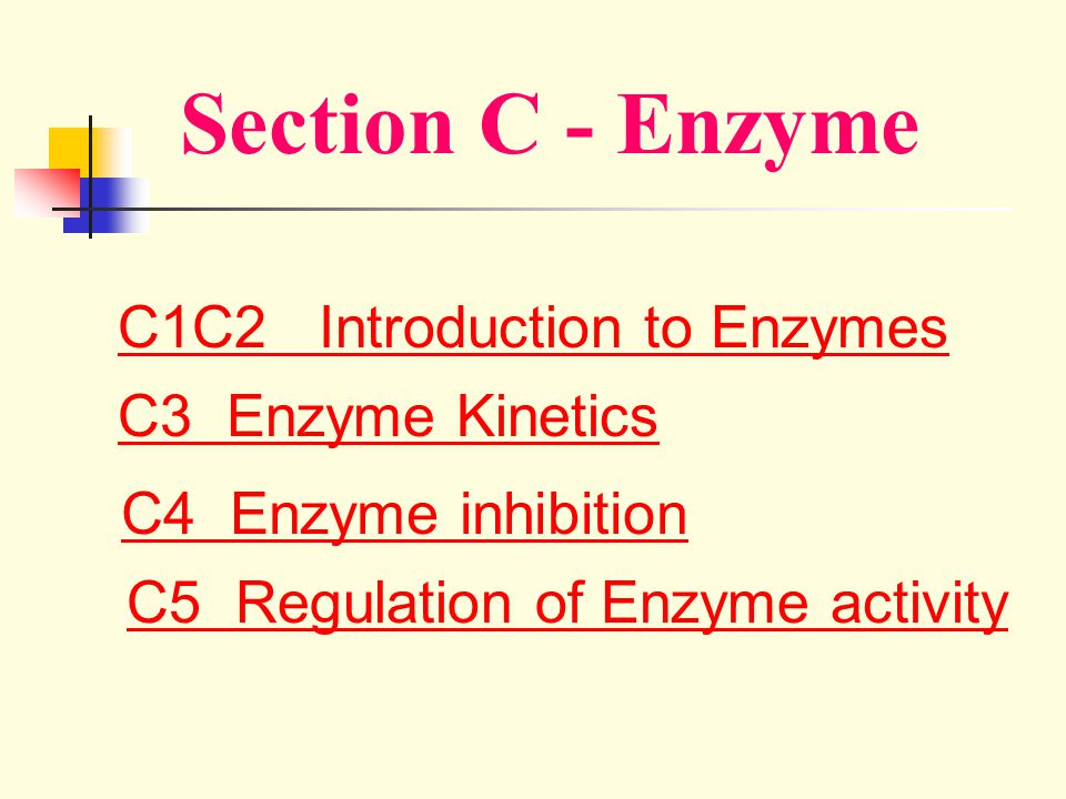 Section C - Enzyme C1C2 Introduction to Enzymes C3 Enzyme Kinetics C4 Enzyme inhibition C5 Regulation of Enzyme activity