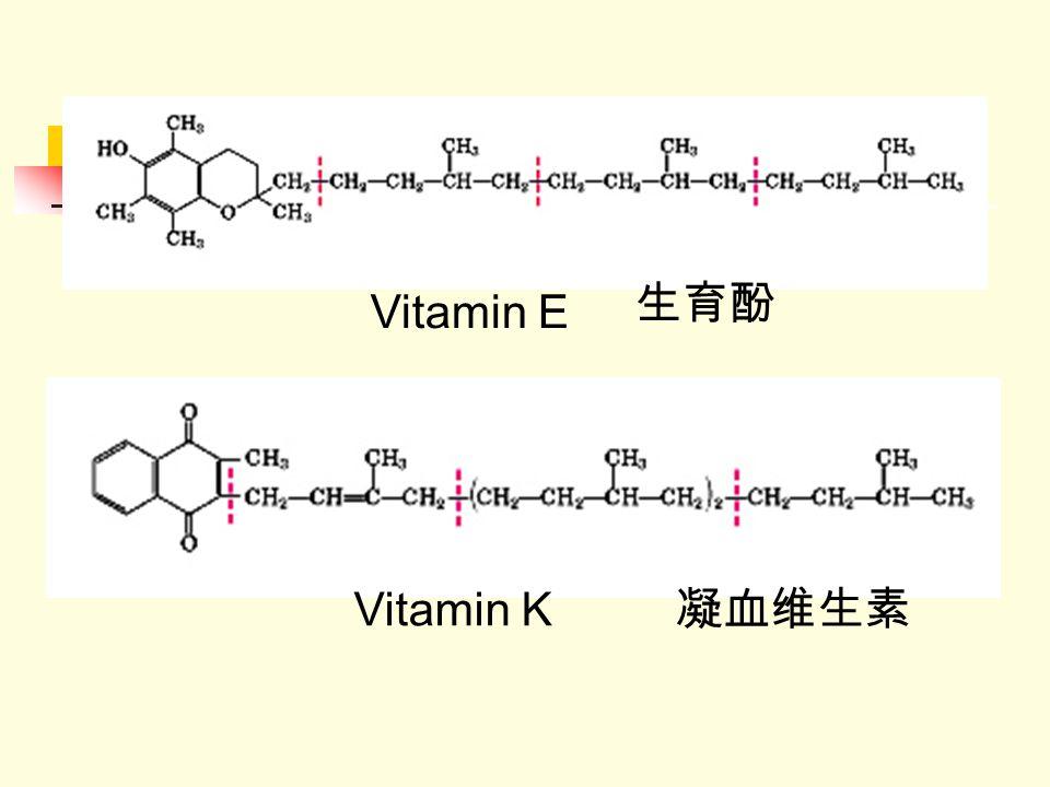 Vitamin E Vitamin K 生育酚 凝血维生素