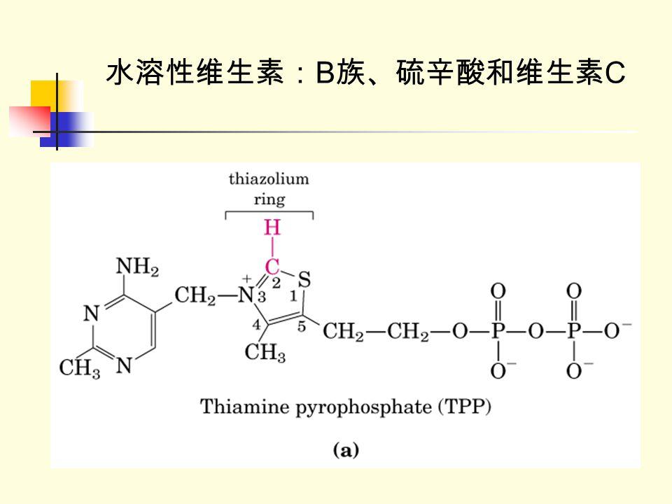 水溶性维生素: B 族、硫辛酸和维生素 C