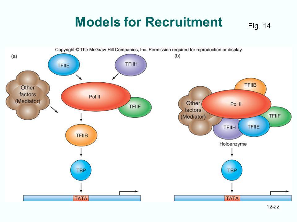12-22 Models for Recruitment Fig. 14