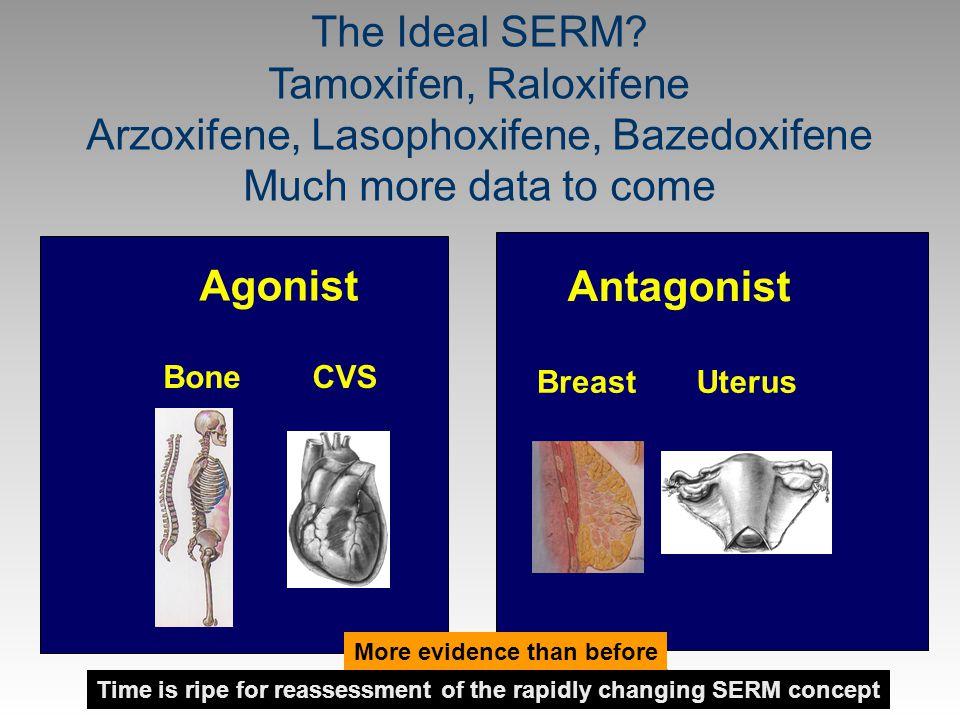 Cell of Positive Thinking, SG, age 75 Agonist BoneCVS Antagonist BreastUterus The Ideal SERM? Tamoxifen, Raloxifene Arzoxifene, Lasophoxifene, Bazedox
