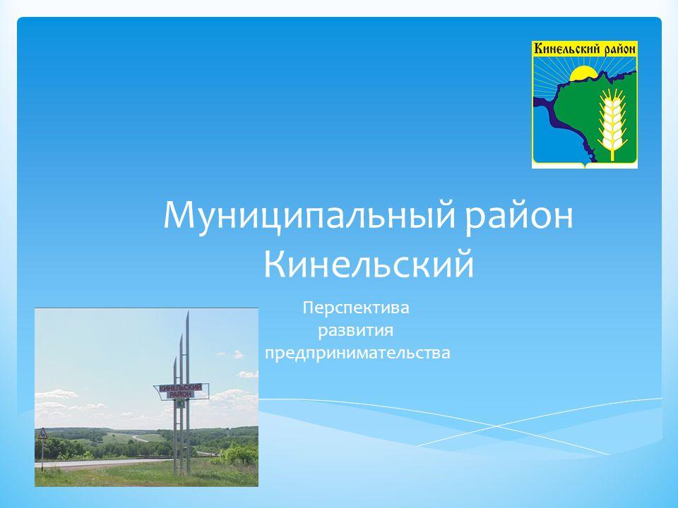 Муниципальный район Кинельский Перспектива развития предпринимательства