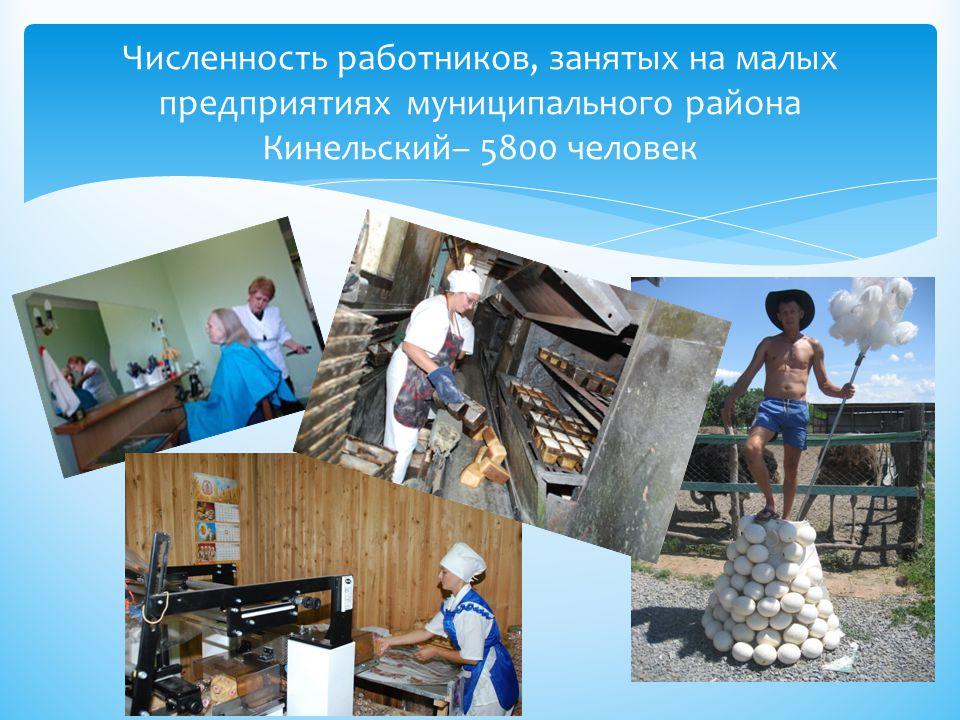 Численность работников, занятых на малых предприятиях муниципального района Кинельский– 5800 человек