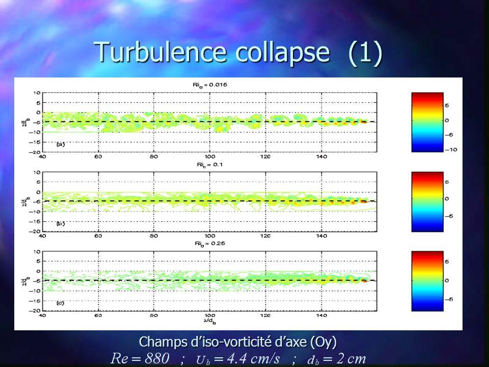 Turbulence collapse (1) Champs d'iso-vorticité d'axe (Oy)