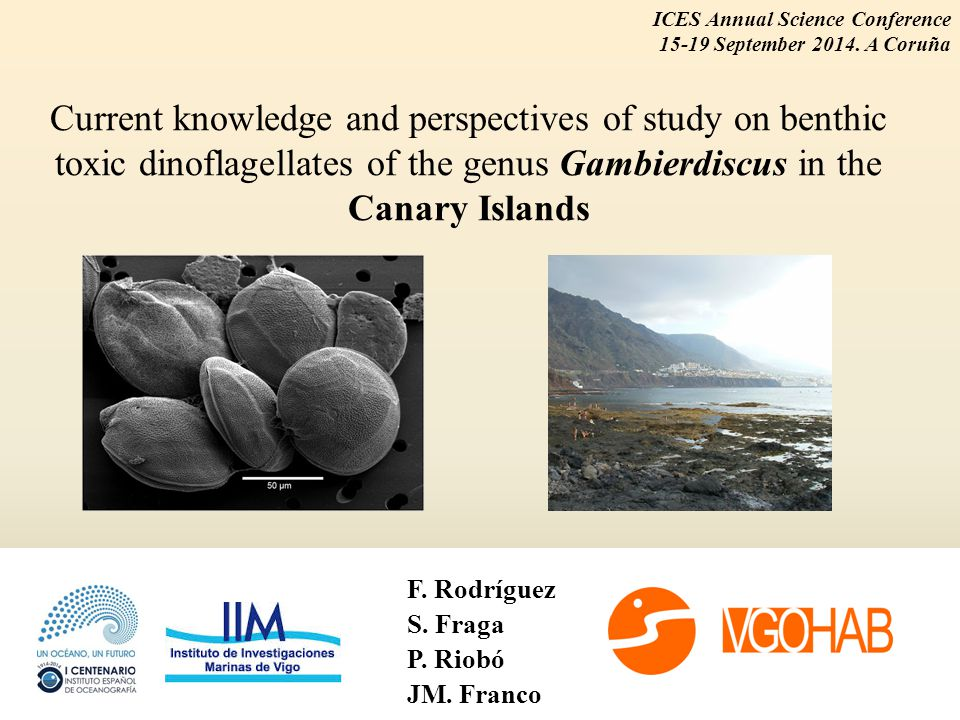 Current knowledge and perspectives of study on benthic toxic dinoflagellates of the genus Gambierdiscus in the Canary Islands F.