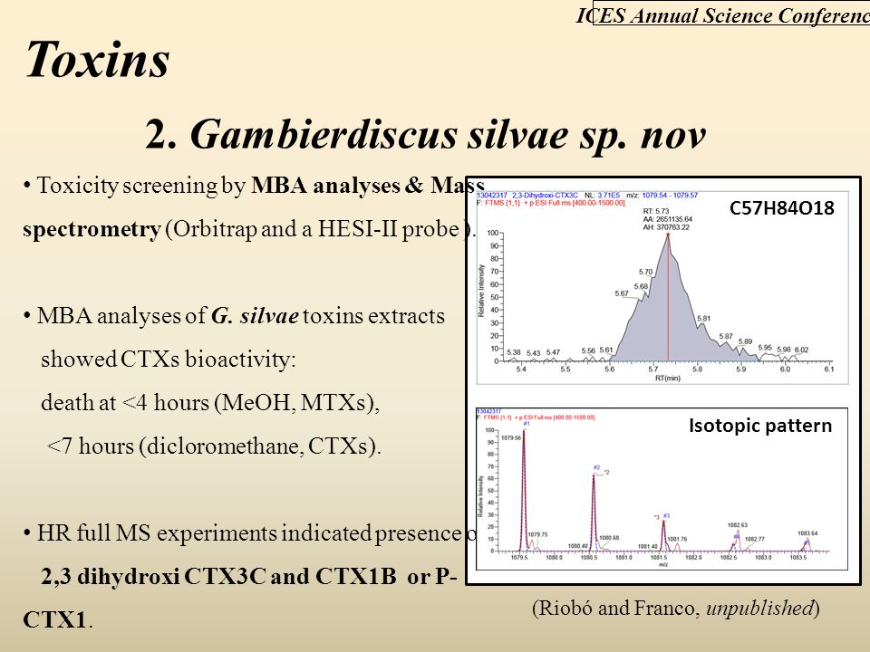 ICES Annual Science Conference 2. Gambierdiscus silvae sp. nov Toxicity screening by MBA analyses & Mass spectrometry (Orbitrap and a HESI-II probe ).