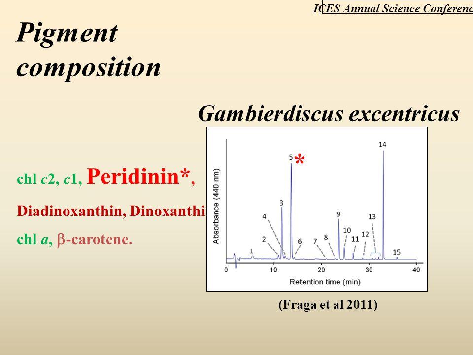 Gambierdiscus excentricus chl c2, c1, Peridinin*, Diadinoxanthin, Dinoxanthin, chl a,  -carotene. ICES Annual Science Conference (Fraga et al 2011) P