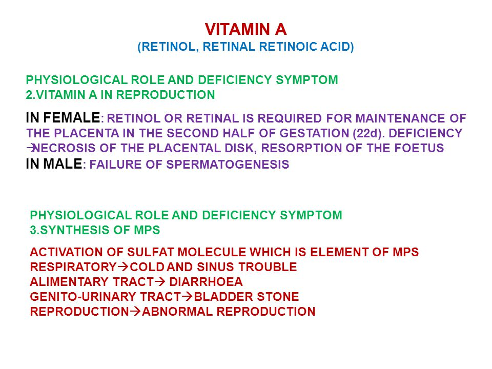 VITAMIN A (RETINOL, RETINAL RETINOIC ACID) PHYSIOLOGICAL ROLE AND DEFICIENCY SYMPTOM 2.VITAMIN A IN REPRODUCTION IN FEMALE : RETINOL OR RETINAL IS REQUIRED FOR MAINTENANCE OF THE PLACENTA IN THE SECOND HALF OF GESTATION (22d).