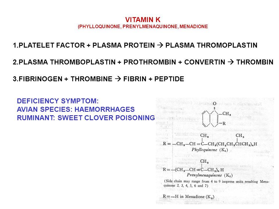 VITAMIN K (PHYLLOQUINONE, PRENYLMENAQUINONE, MENADIONE 1.PLATELET FACTOR + PLASMA PROTEIN  PLASMA THROMOPLASTIN 2.PLASMA THROMBOPLASTIN + PROTHROMBIN + CONVERTIN  THROMBIN 3.FIBRINOGEN + THROMBINE  FIBRIN + PEPTIDE DEFICIENCY SYMPTOM: AVIAN SPECIES: HAEMORRHAGES RUMINANT: SWEET CLOVER POISONING