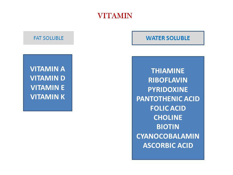 VITAMIN VITAMIN A VITAMIN D VITAMIN E VITAMIN K THIAMINE RIBOFLAVIN PYRIDOXINE PANTOTHENIC ACID FOLIC ACID CHOLINE BIOTIN CYANOCOBALAMIN ASCORBIC ACID FAT SOLUBLE WATER SOLUBLE