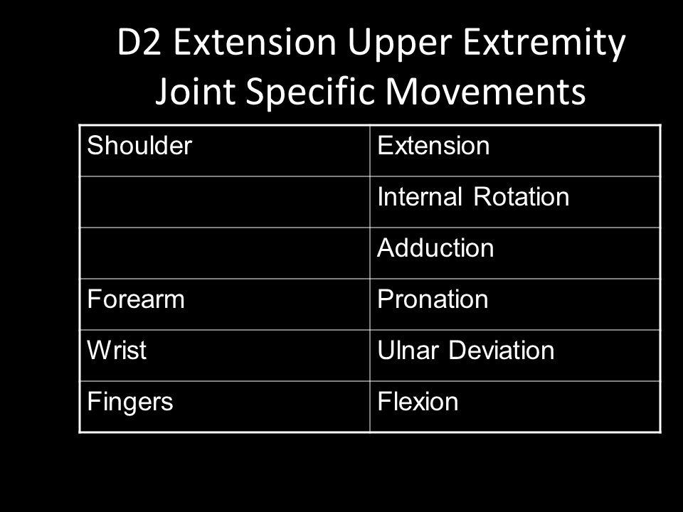 D2 Extension Upper Extremity Joint Specific Movements ShoulderExtension Internal Rotation Adduction ForearmPronation WristUlnar Deviation FingersFlexion