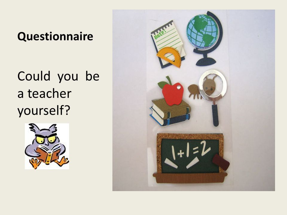 Questionnaire Could you be a teacher yourself?