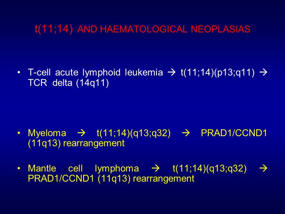 t(11;14) AND HAEMATOLOGICAL NEOPLASIAS T-cell acute lymphoid leukemia  t(11;14)(p13;q11)  TCR delta (14q11) Myeloma  t(11;14)(q13;q32)  PRAD1/CCND1 (11q13) rearrangement Mantle cell lymphoma  t(11;14)(q13;q32)  PRAD1/CCND1 (11q13) rearrangement