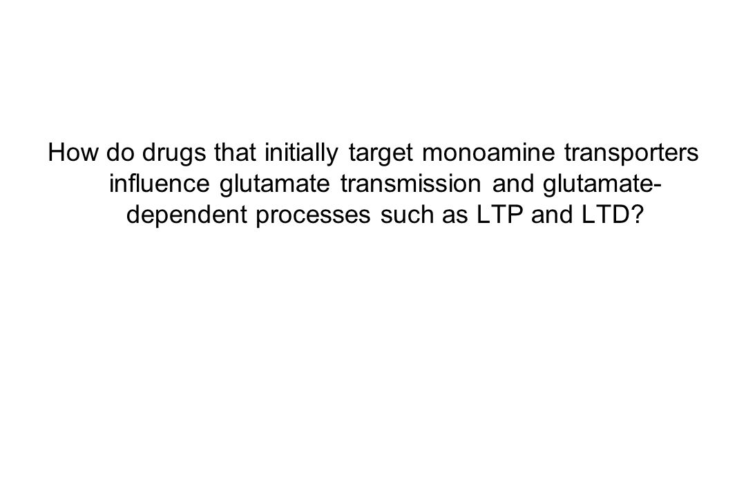 Drugs may modulate LTP via actions on neuronal circuits Everitt and Wolf, J Neurosci 2002
