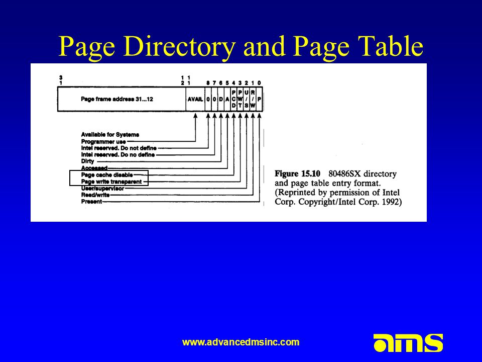 Page Directory and Page Table Entries
