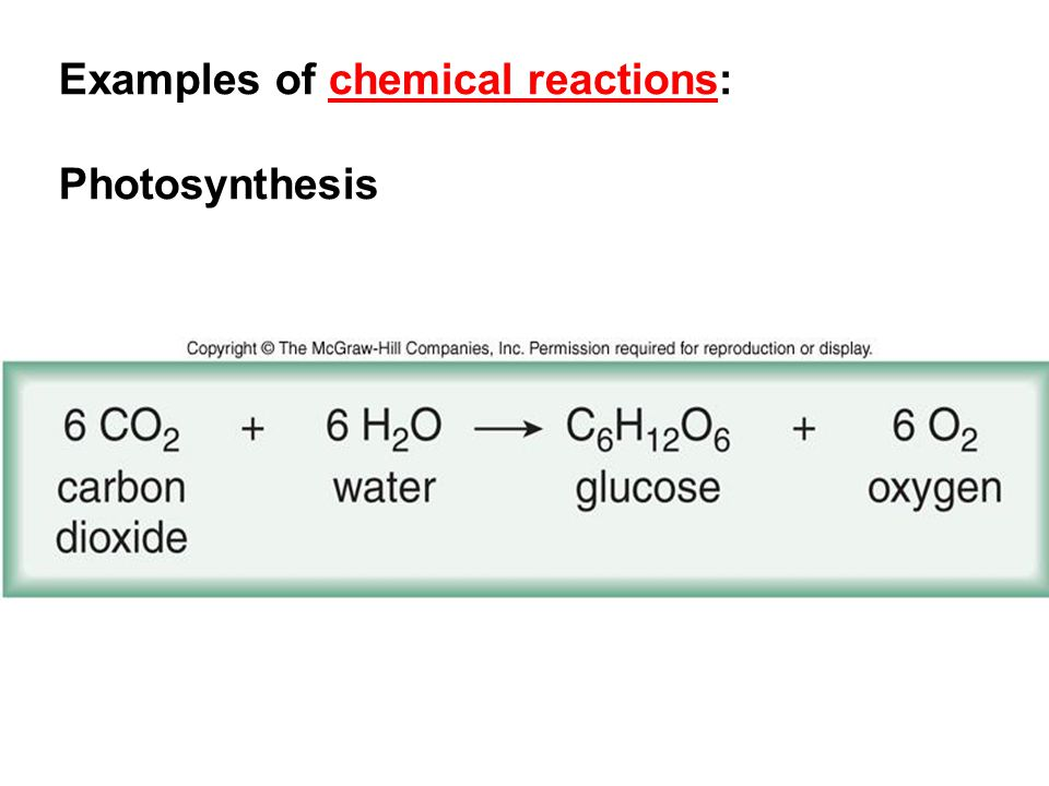 Examples of chemical reactions: Photosynthesis