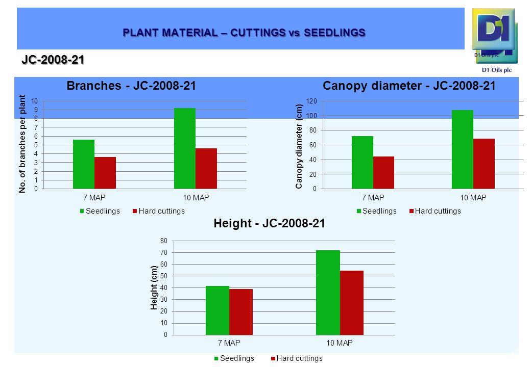 D1 Oils plc JC-2008-21 20 PLANT MATERIAL – CUTTINGS vs SEEDLINGS