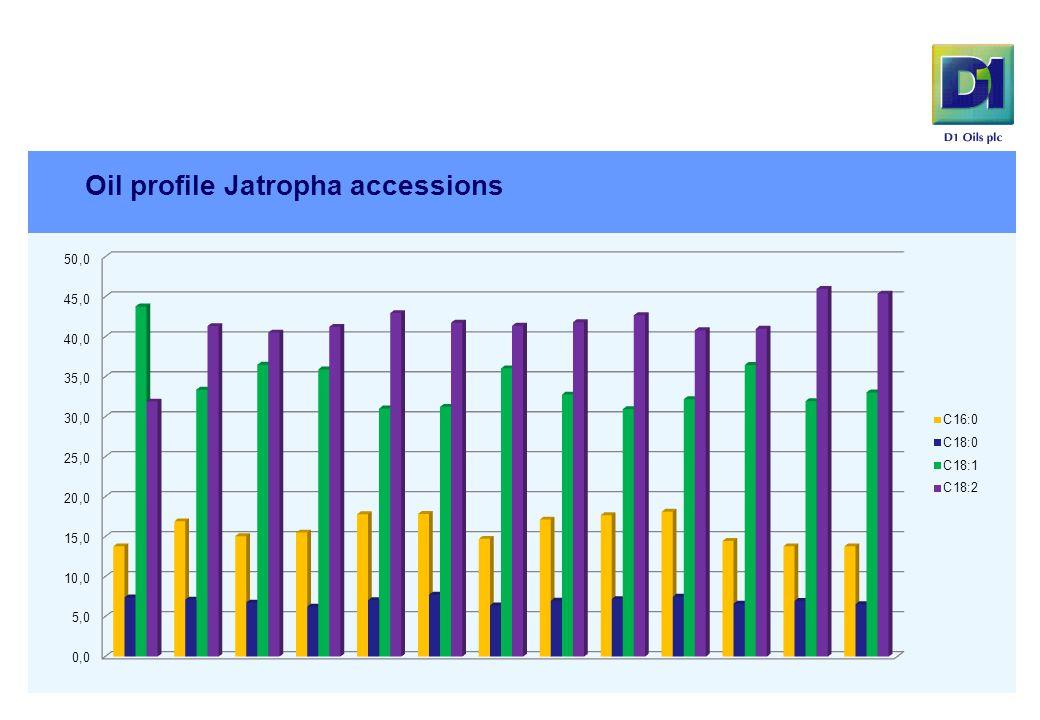 Oil profile Jatropha accessions