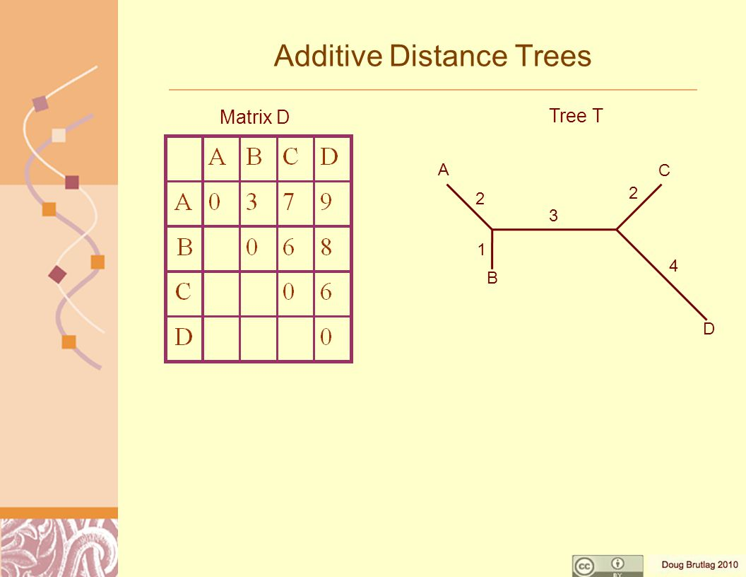 Additive Distance Trees Matrix D Tree T A B C D 2 1 3 2 4