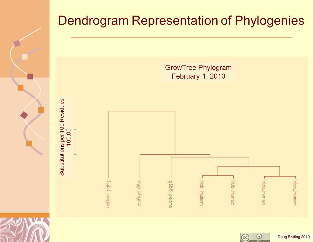 Dendrogram Representation of Phylogenies Substitutions per 100 Residues 100.00 GrowTree Phylogram February 1, 2010