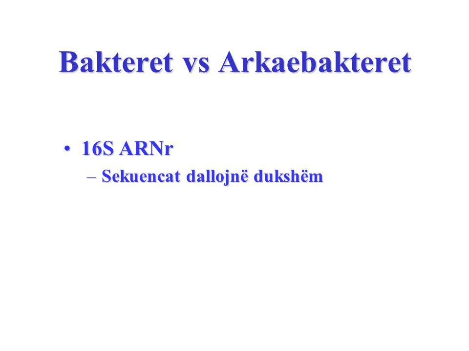 Bakteret vs Arkaebakteret 16S ARNr16S ARNr –Sekuencat dallojnë dukshëm