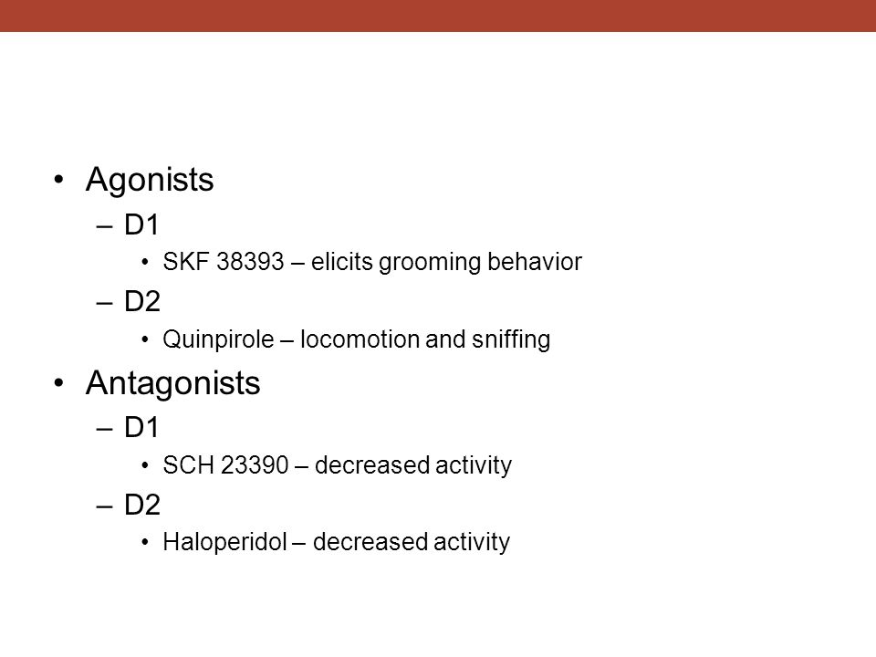 Agonists –D1 SKF 38393 – elicits grooming behavior –D2 Quinpirole – locomotion and sniffing Antagonists –D1 SCH 23390 – decreased activity –D2 Haloperidol – decreased activity