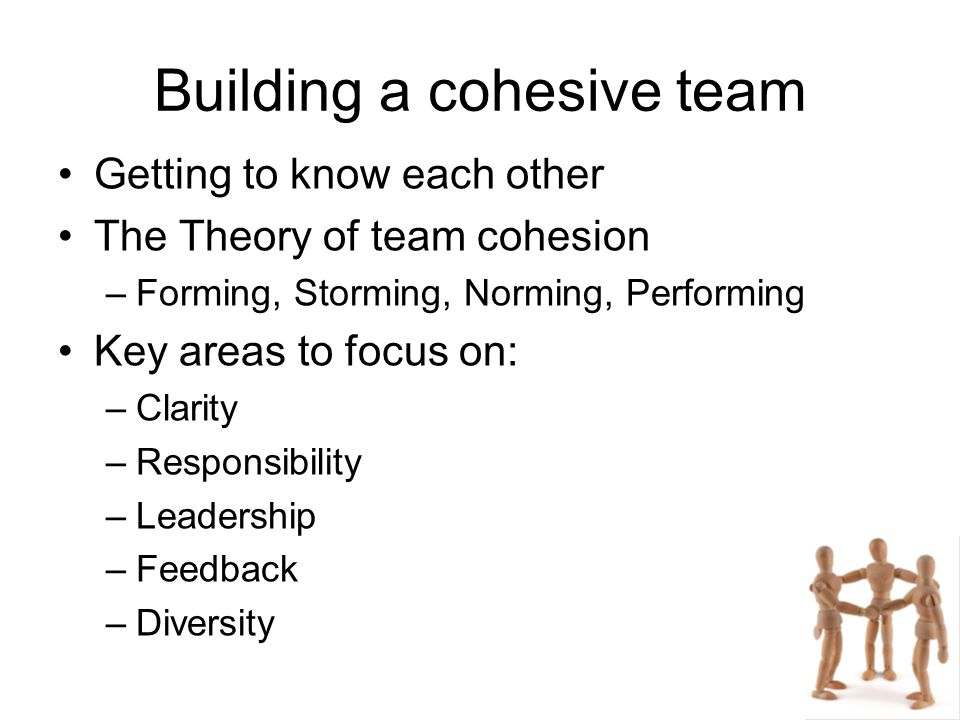 Building a cohesive team Getting to know each other The Theory of team cohesion –Forming, Storming, Norming, Performing Key areas to focus on: –Clarit