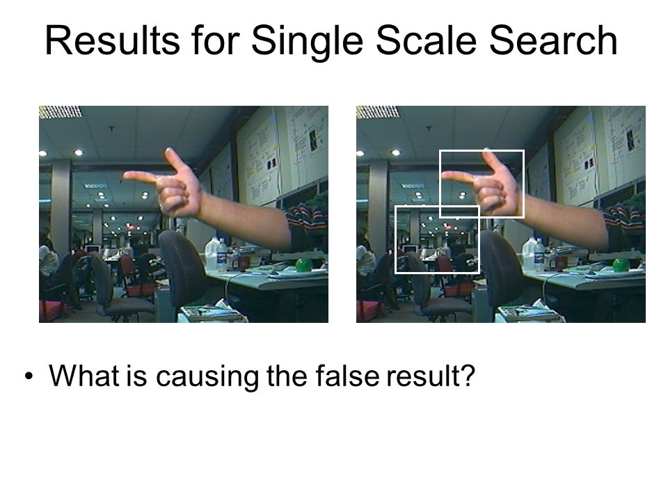 Results for Single Scale Search What is causing the false result?
