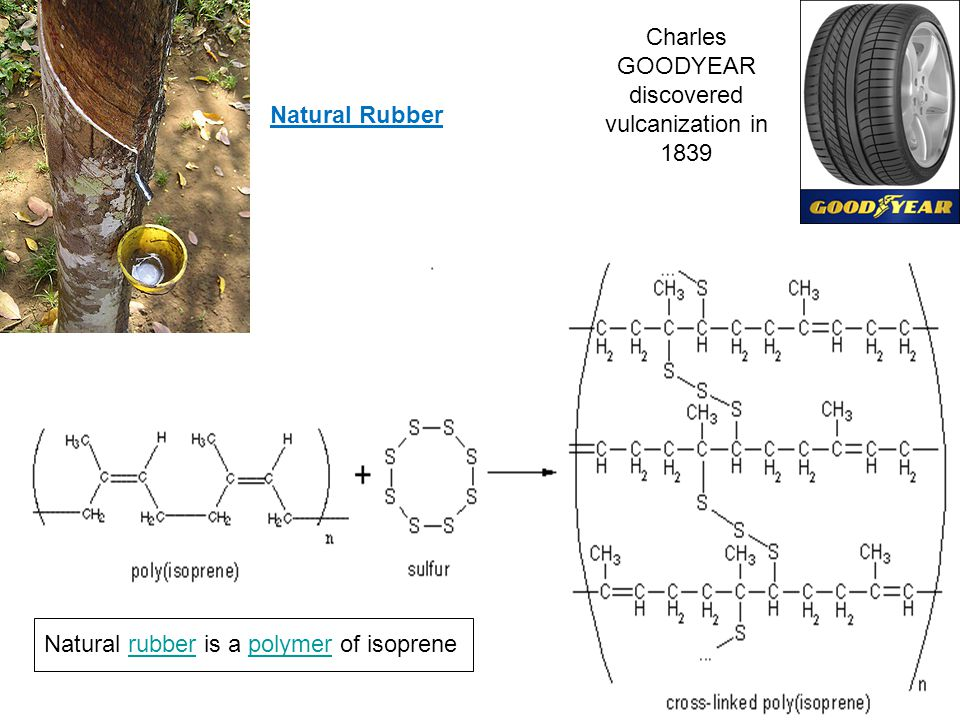 Protein Natural Polymers: Polymers in Animals