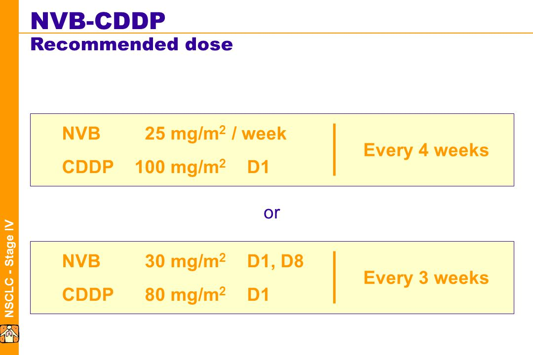 NSCLC - Stage IV NVB-CDDP Recommended dose NVB25mg/m 2 / week CDDP100mg/m 2 D1 Every 4 weeks NVB30mg/m 2 D1, D8 CDDP80mg/m 2 D1 Every 3 weeks or