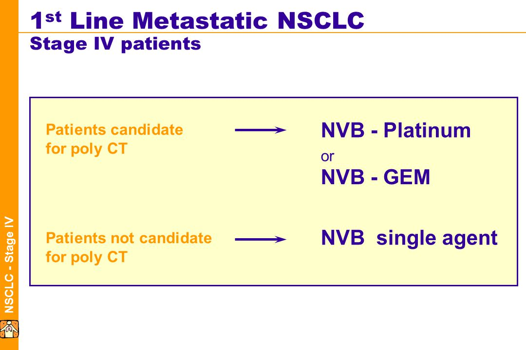 NSCLC - Stage IV Patients candidate for poly CT NVB - Platinum 1 st Line Metastatic NSCLC Stage IV patients Patients not candidate for poly CT NVB single agent NVB - GEM or