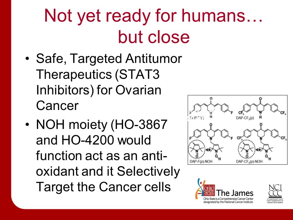 Not yet ready for humans… but close Safe, Targeted Antitumor Therapeutics (STAT3 Inhibitors) for Ovarian Cancer NOH moiety (HO-3867 and HO-4200 would function act as an anti- oxidant and it Selectively Target the Cancer cells HO-3867 compound mixed with the animal feed at 3 different levels (25, 50 & 100 ppm).