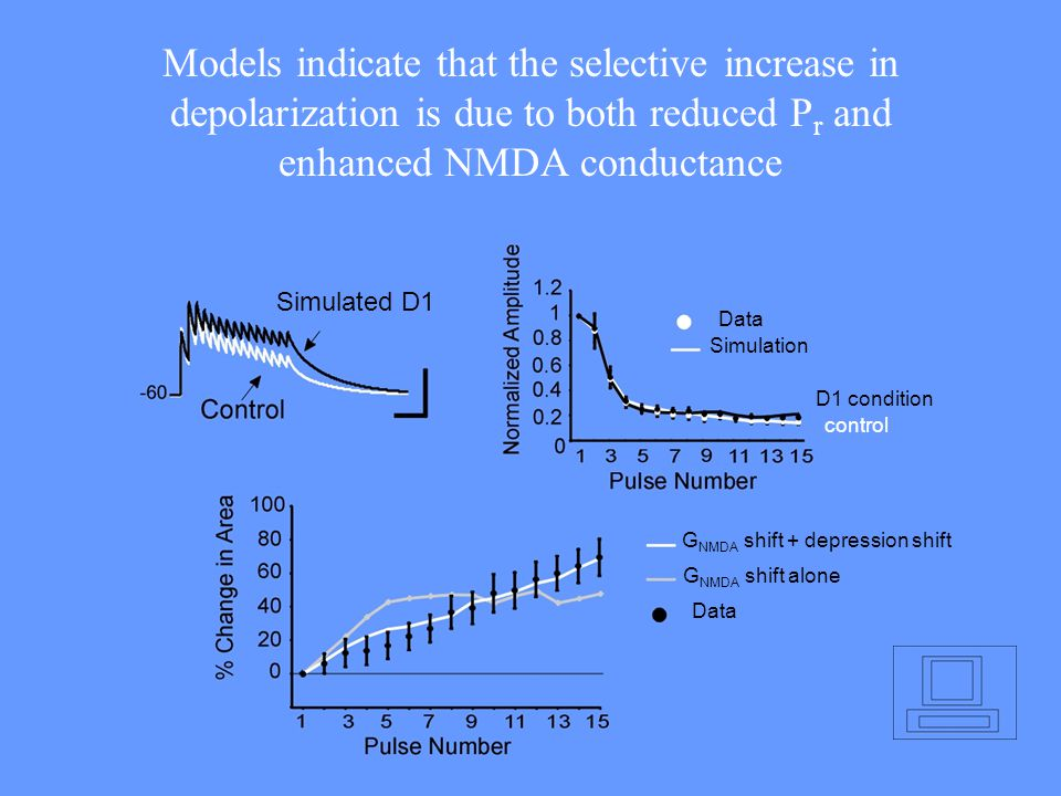Models indicate that the selective increase in depolarization is due to both reduced P r and enhanced NMDA conductance Data Simulation G NMDA shift +