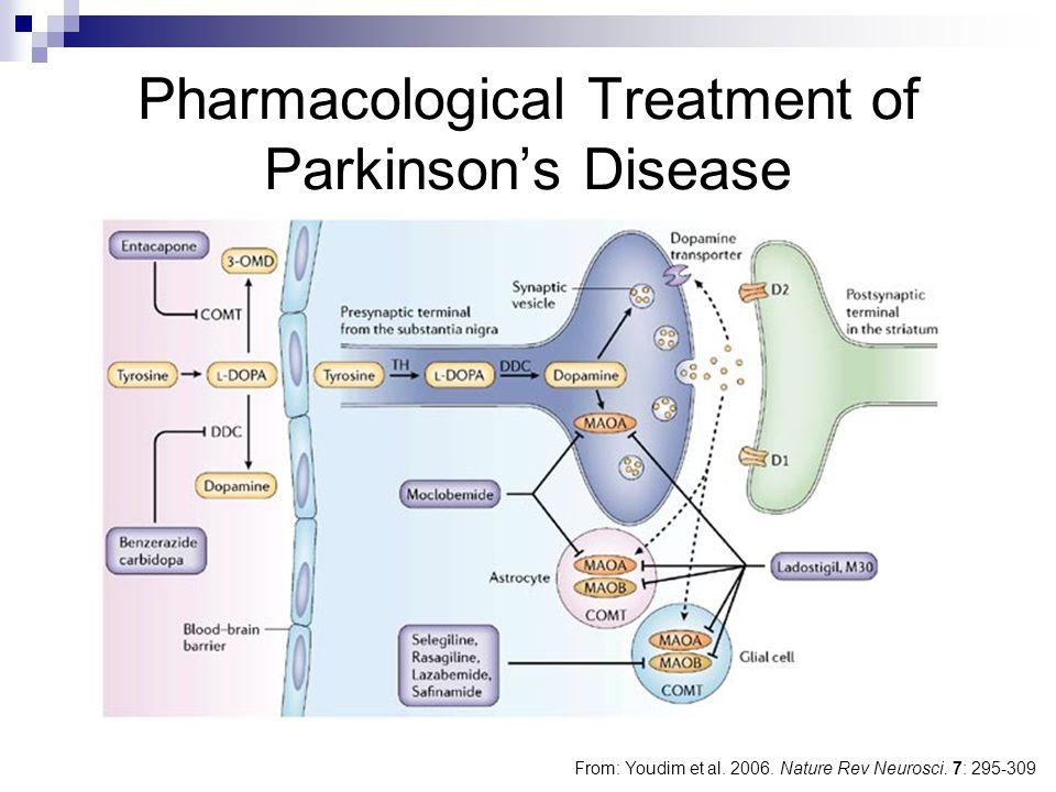 Pharmacological Treatment of Parkinson's Disease From: Youdim et al. 2006. Nature Rev Neurosci. 7: 295-309