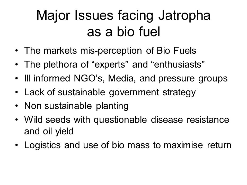 If Jatropha is to have a future An independent body to certify sustainable and fair trade Jatropha A concerted effort to differentiate the sustainable Jatropha from other bio feedstocks Financiers need to put their money where there mouth is and give solid support to sustainable Jatropha and technology A clampdown on planting of wild seeds and unsustainable planting and encouragement of licensing of higher yielding disease resistant breeds expertise from companies such as www.d1plc.com A re education programme for NGO's and experts to deliver a differentiated message Pressure on Governments to deliver long term consistent plans to support their posturing on Climate Change, the immediate scrapping of the unfair US B99 splash and dash subsidy for bio diesel in The USA Commitment by all Jatropha enthusiasts to deliver end to end Global best practice by sharing world class solutions eg www.heliusenergy.com and www.effenergy.comwww.heliusenergy.com