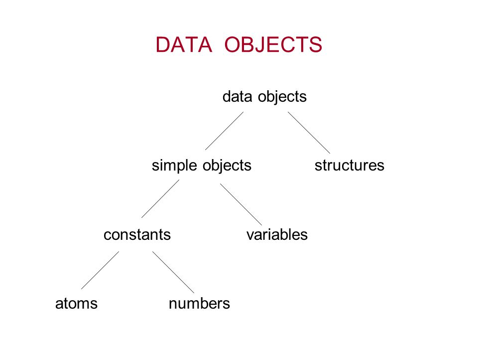 DATA OBJECTS data objects simple objects structures constants variables atoms numbers