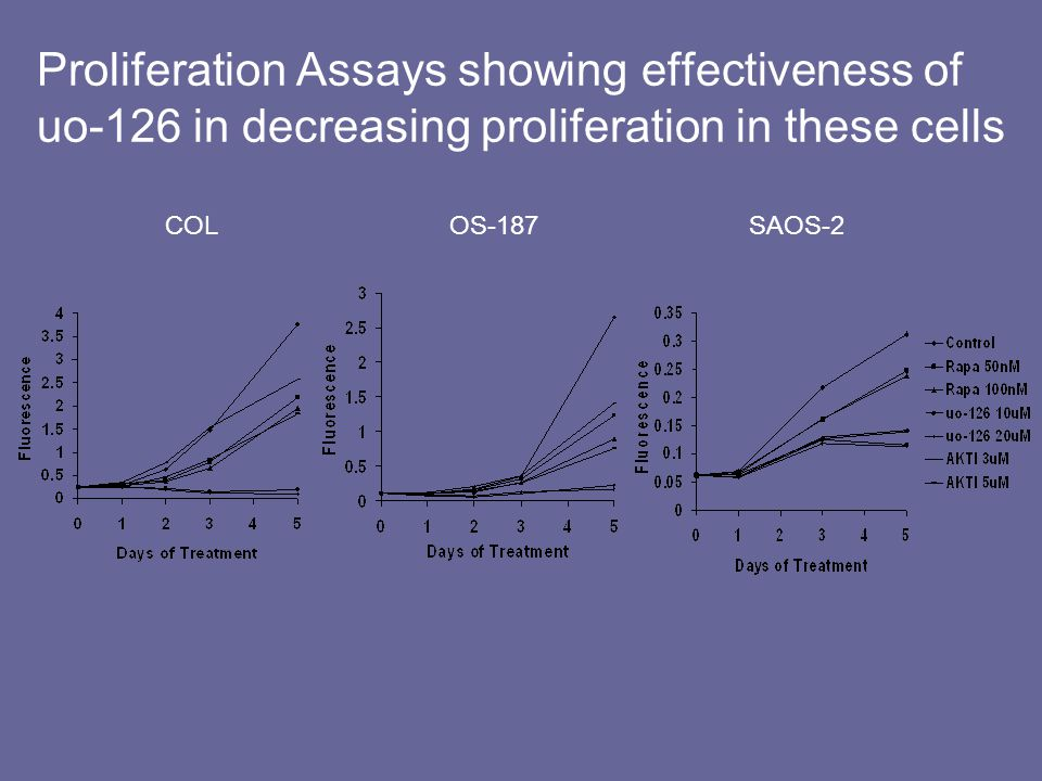 Proliferation Assays showing effectiveness of uo-126 in decreasing proliferation in these cells COL OS-187 SAOS-2