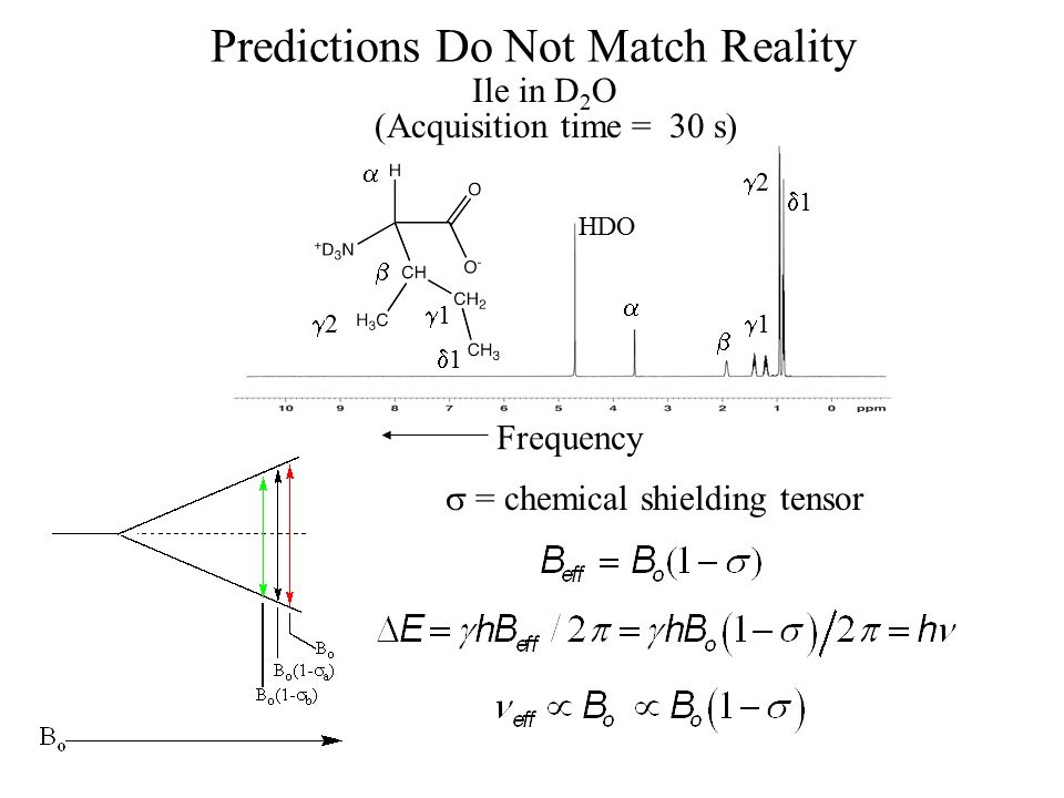 Predictions Do Not Match Reality  = chemical shielding tensor Frequency Ile in D 2 O 11 22 11   HDO   11 22 11 (Acquisition time = 30 s)
