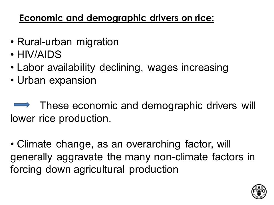 Economic and demographic drivers on rice: Rural-urban migration HIV/AIDS Labor availability declining, wages increasing Urban expansion These economic and demographic drivers will lower rice production.