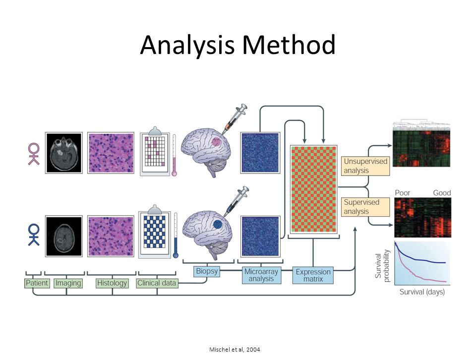 Analysis Method Mischel et al, 2004
