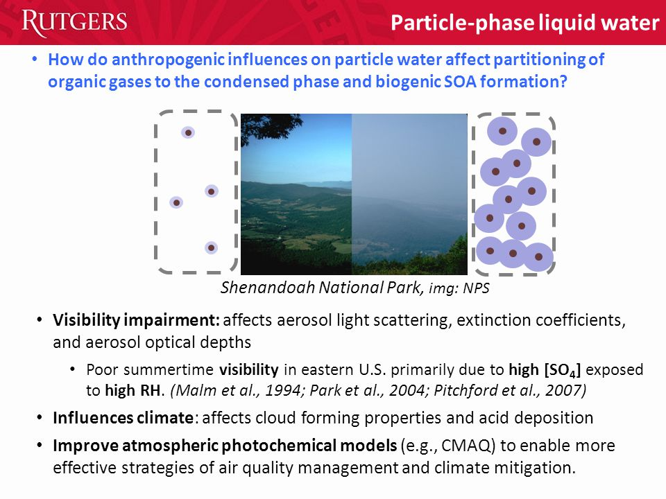 How do anthropogenic influences on particle water affect partitioning of organic gases to the condensed phase and biogenic SOA formation.
