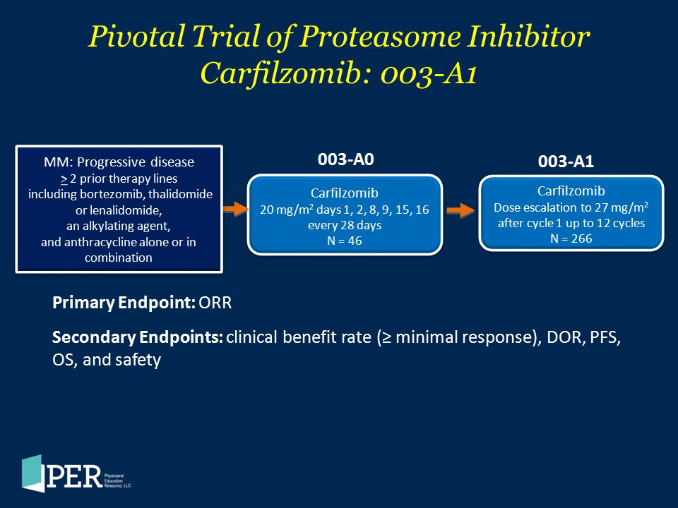 Pivotal Trial of Proteasome Inhibitor Carfilzomib: 003-A1 Carfilzomib 20 mg/m 2 days 1, 2, 8, 9, 15, 16 every 28 days N = 46 Carfilzomib 20 mg/m 2 day