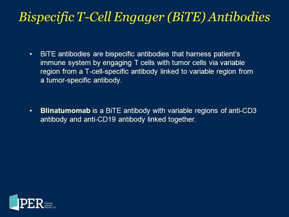 Bispecific T-Cell Engager (BiTE) Antibodies BiTE antibodies are bispecific antibodies that harness patient's immune system by engaging T cells with tu