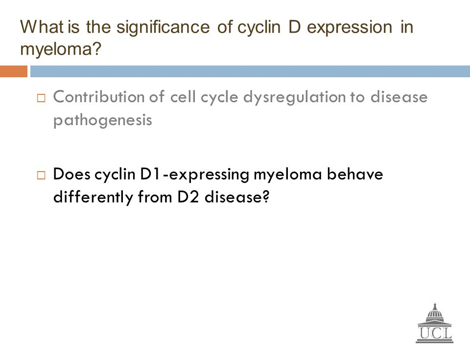 What is the significance of cyclin D expression in myeloma?  Contribution of cell cycle dysregulation to disease pathogenesis  Does cyclin D1-expres